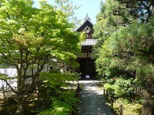 寺務所と新緑
