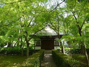 萬霊堂と新緑