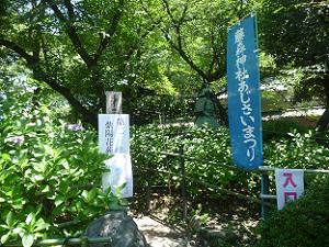第二紫陽花苑の入り口
