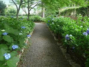 紫陽花園の入り口