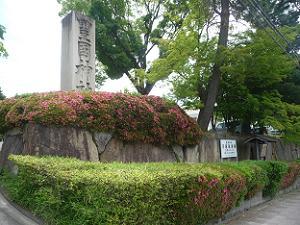 石柱とサツキ