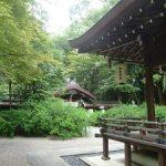 夏の梨木神社は緑がいっぱい・2017年