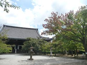 花の木と本堂