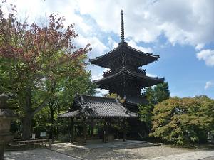 花の木と三重塔