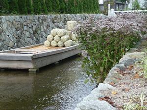 フジバカマと舟と川