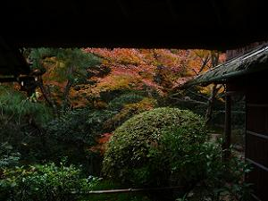 時雨亭から見る紅葉