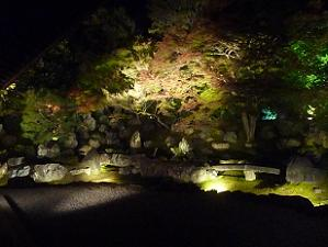 北庭のライトアップ