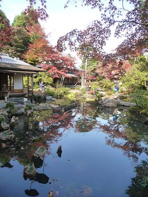 瑞月池と紅葉