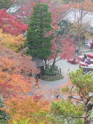 医聖堂から眺める紅葉風景