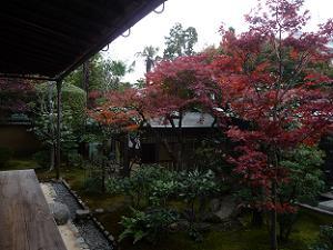 本堂東側の紅葉
