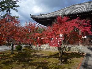 講堂と紅葉