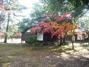 能楽堂付近の紅葉