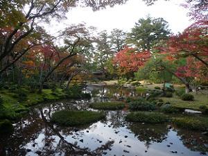 東側から見る紅葉風景