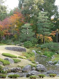 芝生と水の流れと紅葉