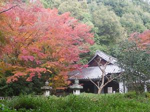来迎院の本堂と紅葉