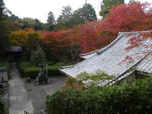 荒神堂から眺める紅葉