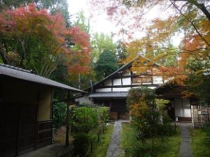 庭園入口付近の紅葉