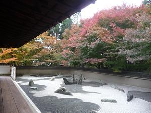 龍の庭と紅葉