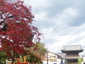 紅葉と仁王門