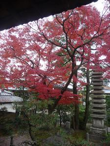 紅葉と十三重石塔
