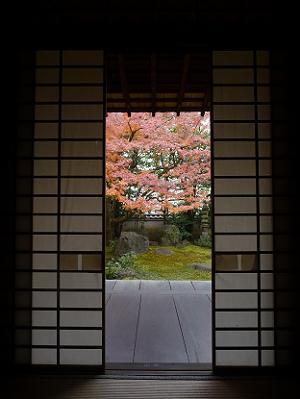 本堂の中から見る紅葉