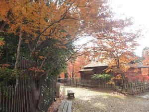 茶室梅交軒と紅葉
