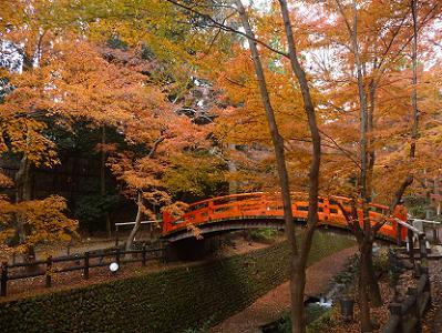 鴬橋と紅葉