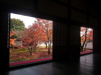 本堂から眺める紅葉