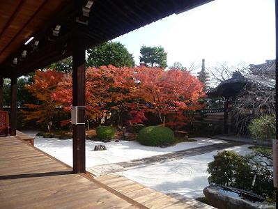四海唱導の庭の紅葉