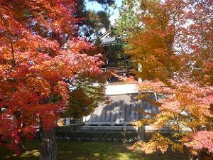 紅葉越しに見る鐘楼