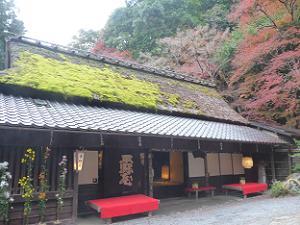 平野屋と紅葉