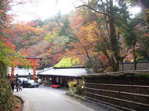 鳥居本と山の紅葉