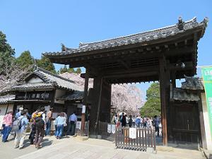 三宝院の入り口