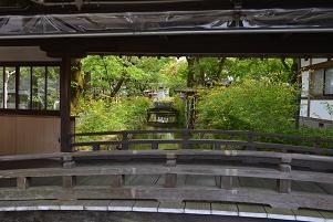 廊下越しに見る小川とヤマブキ