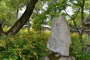石碑とヤマブキ