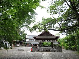 拝殿と新緑
