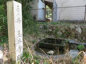玉の井 玉井寺跡