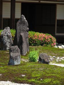 三尊石とサツキ
