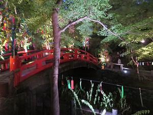 鴬橋のライトアップ