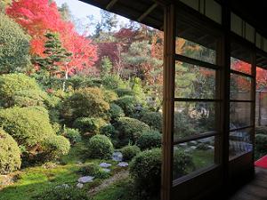 縁側から眺める庭園