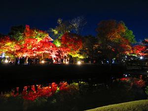 阿字池に映る紅葉