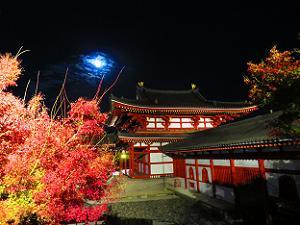 紅葉と鳳凰堂と月