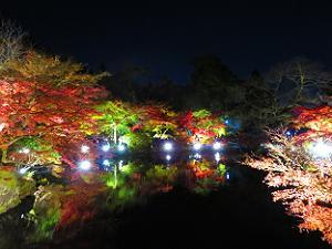 林泉のライトアップ