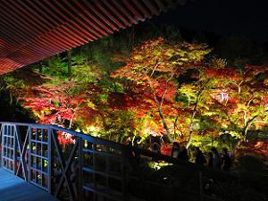 観音堂から眺める林泉の紅葉