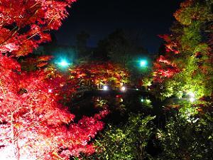 夢庵から見る放生池と紅葉