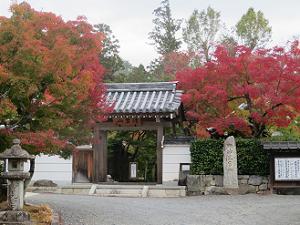 圓成寺の参道