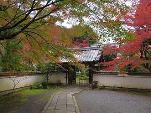 吟松寺の山門と紅葉