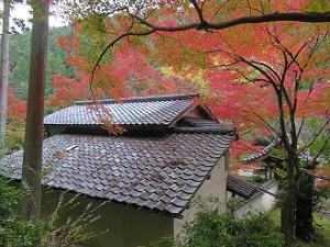 屋根瓦と紅葉