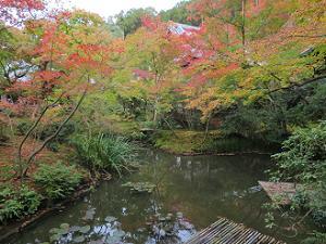 栖龍池と紅葉