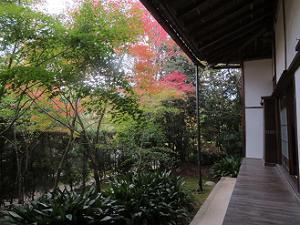 西側の庭園